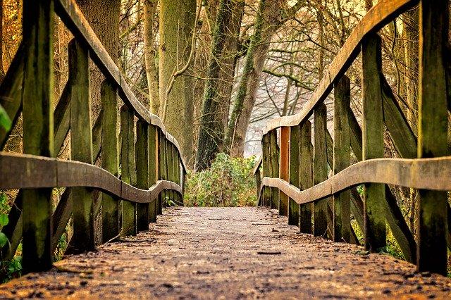 cesta po drevenom moste.jpg